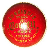 SS County Alum Tanned 12 Ball Set Cricket Ball