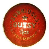 SS Gutsy Alum Tanned 3 Ball Set Cricket Ball