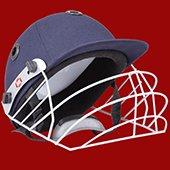 SS Prince Junior Cricket Helmet