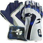 SS Player Series Cricket Wicket Keeping Gloves