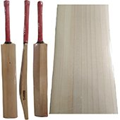 Thrax Custom Made Cricket Bat English Willow Grade A Plus T28