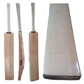 Thrax Custom Made Cricket Bat English Willow Grade A Plus T19