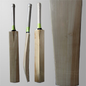 Thrax Custom Made Cricket Bat English Willow Grade A T108