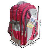 VDM Pink and Silver Casual Backpacks