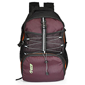VIP I1 03 Laptop Backpack Black and Purple