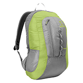 Wildcraft Nuptse 20 Backpack Gray and Green